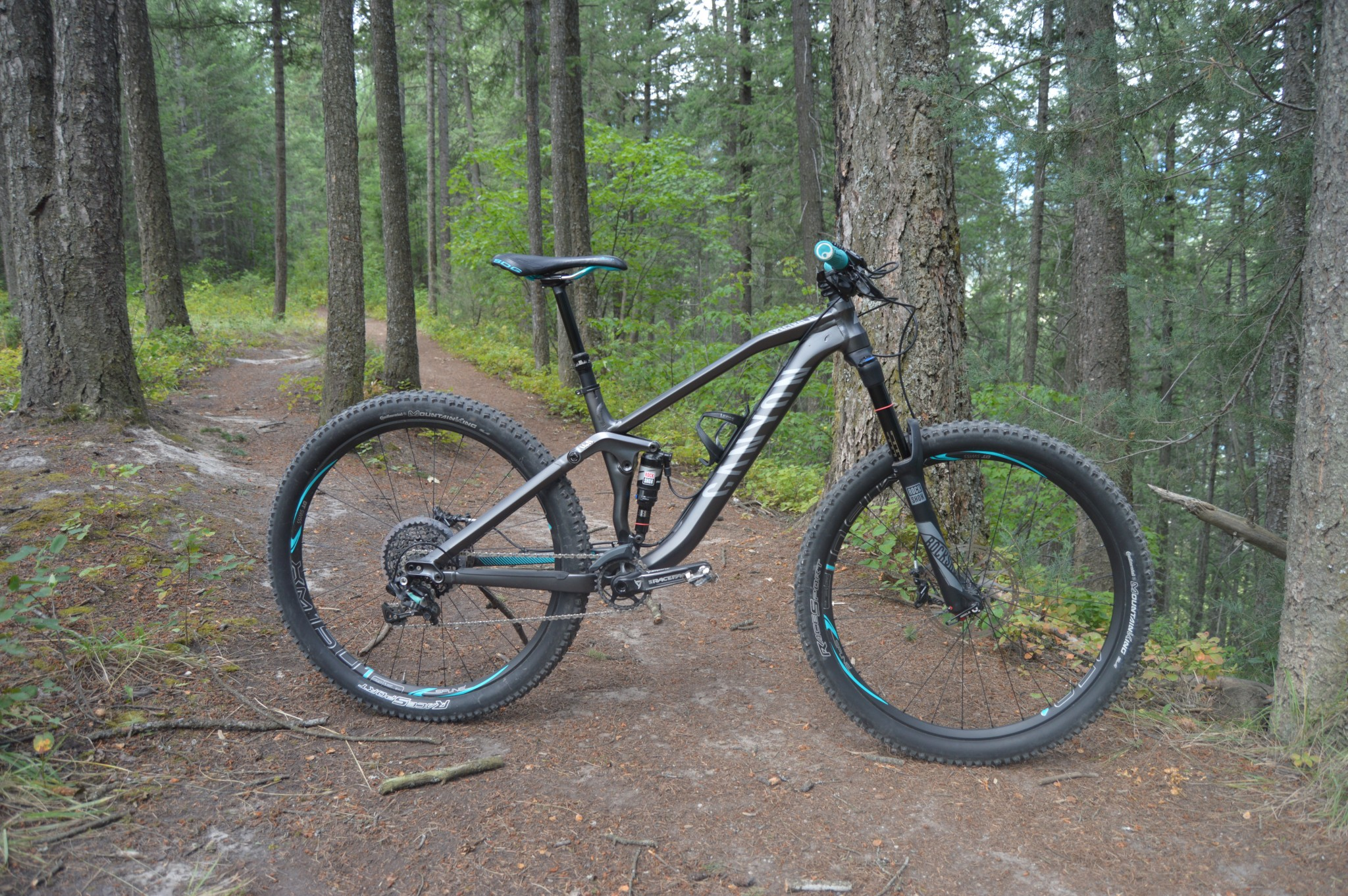 canyon bicycles spectral al 80 ex wmn 2016 reviews